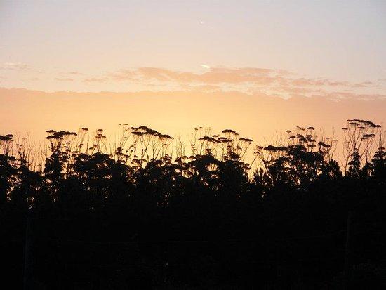 Witelsbos, Südafrika: Sunset on Cadeau