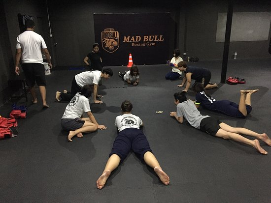 Mad Bull Muay Thai Gym