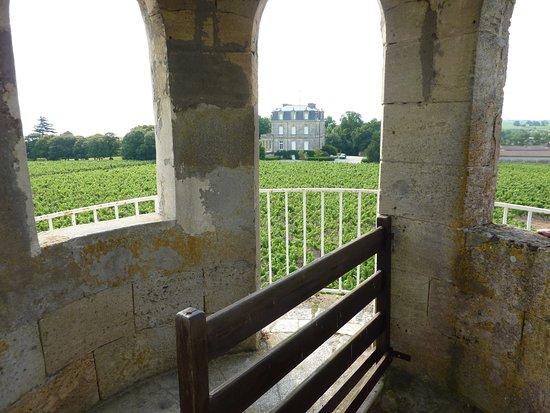 Begadan, ฝรั่งเศส: le chateau depuis la tour
