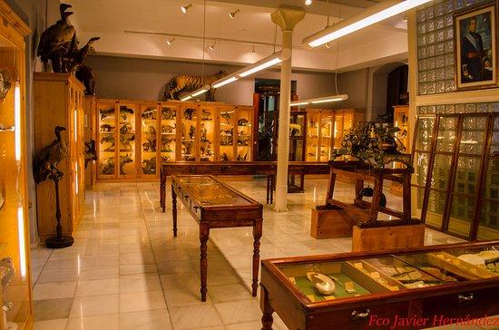 Museo de las Ciencias: Vista de una de las salas.