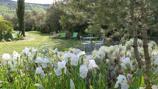 Bergerie en Garrigue à Pompignan dans le Gard - Gite Au Coin du Berger - Jardin