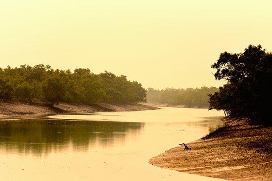 Visit Sunderbans- Take A Break Travels