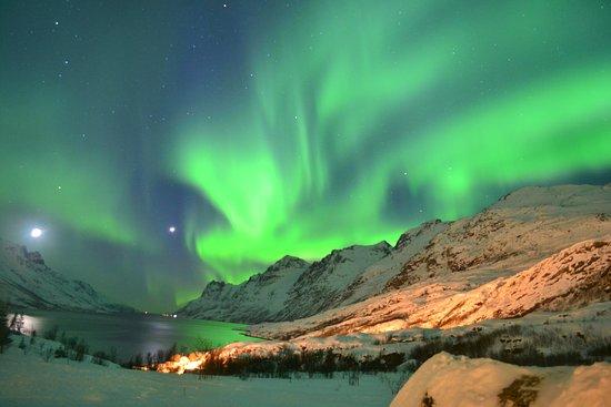 Northern Lights Tromso Bild Fr 229 N Tromso Safari Troms 248