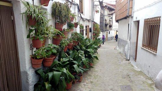 Barrio Judio de Hervas