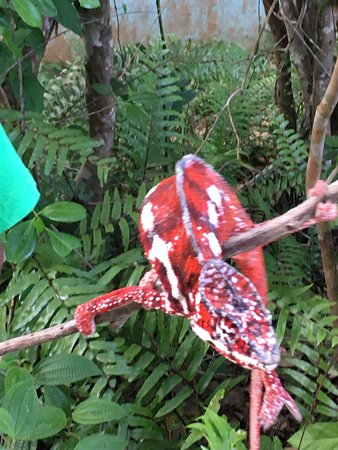 Toamasina (Tamatave)