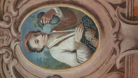 Cantine Amistani - Cà Bressa: Affreschi del 1600 e Cedraia del 1500 alle Cantine Amistani Guarda