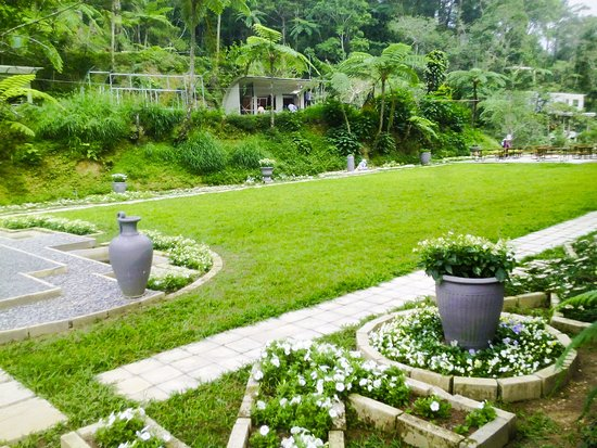 Mount Costa: Formal Garden
