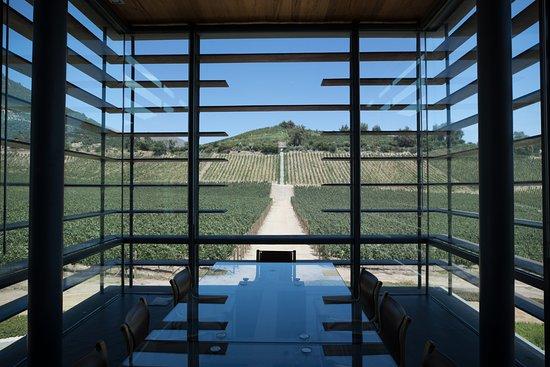 San Felipe, Chili: Room inside the Icon winery