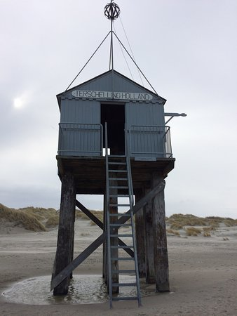 Terschelling Adası, Hollanda: photo2.jpg