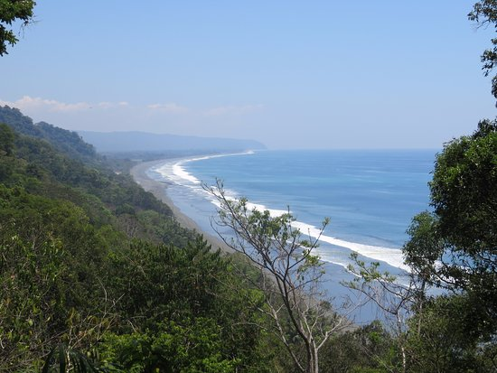 La Leona Eco Lodge: Carate Beach