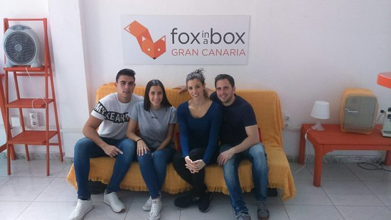 Fox in a Box Gran Canaria