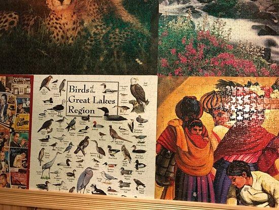 Electric Cheetah: Wallpaper in the Ladies Restroom