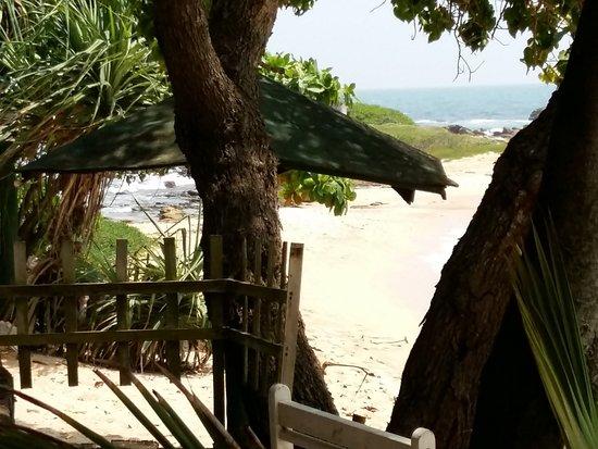 Turtle Landing Restaurant: Cadre idyllique, les pieds dans l'eau