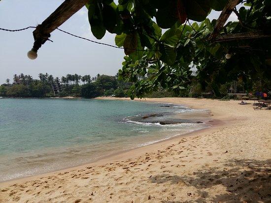 Turtle Landing Restaurant: plage aux pieds du restaurant