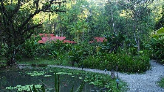 Esquinas Rainforest Lodge Image