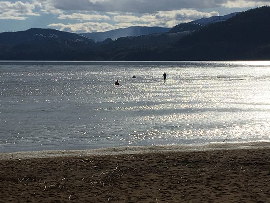 Penticton, Canadá: someone on the ice.....