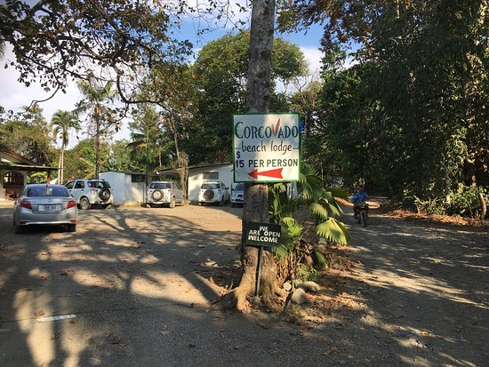 Corcovado Beach Lodge: Great Cabinas!!