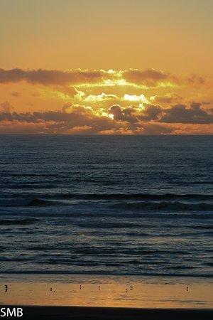 Harris Beach State Park: Sunset at Harris