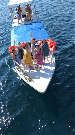 Changing Tide Tours: My groups have so much fun on this excursion!