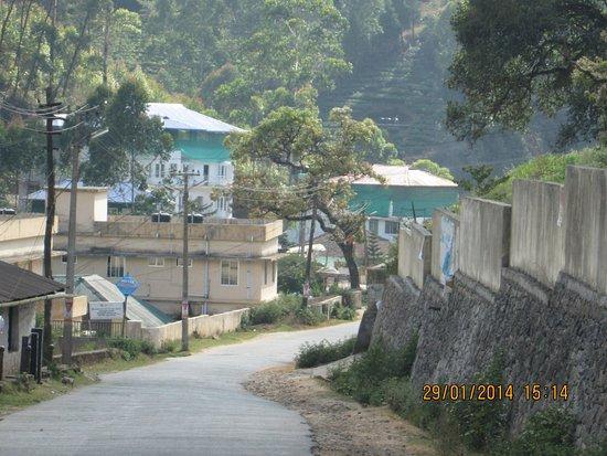 Spring Dale Resort: Devikulam