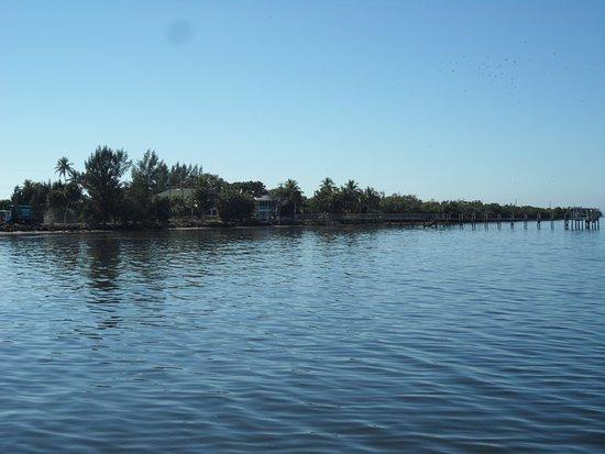 Bokeelia fishing pier fl top tips before you go with for Bokeelia fishing pier