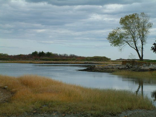 Walker's Point: View of the Kennebunk River