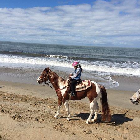 Monterey Bay Equestrian Center: photo1.jpg