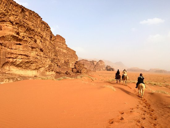 Jordan Tracks : The landscape was gorgeous; the horses were very well-trained and responsive. The most amazing t
