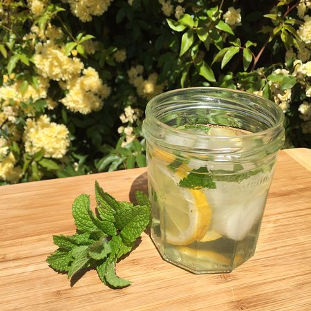 Campania, Australien: Iced olive leaf tea with lemon and mint.