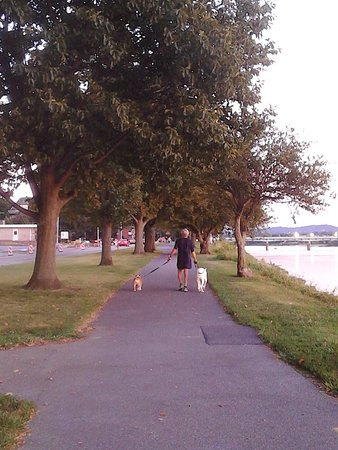 City Island: Be sure to do the riverfront palk with your pets and Honey! We do all the time! Very romantic!
