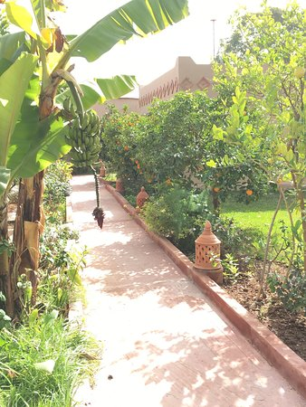 Hotel Dar Zitoune: photo0.jpg