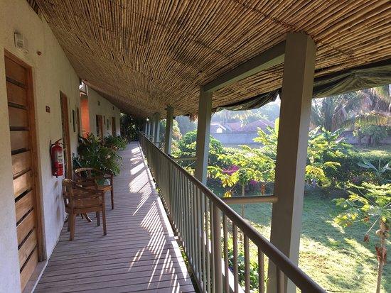 Hotel Sol Samara Picture