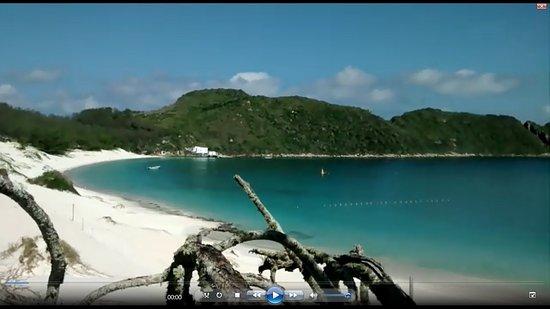 Passeio de Barco em Arraial do Cabo RJ Tubarao Rio