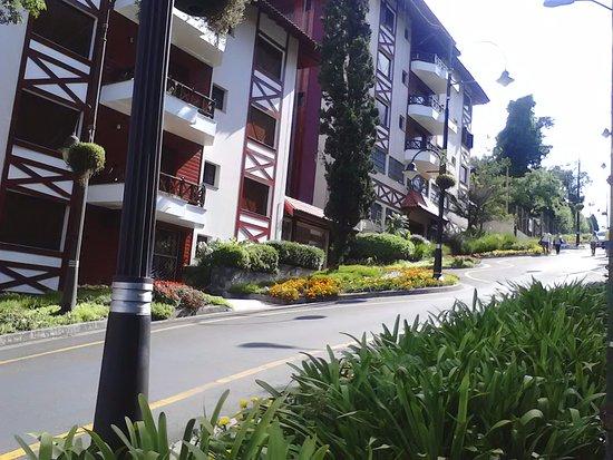 Gramado, RS: Rua Torta