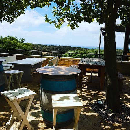 Wise Vineyard Restaurant: IMG_20170221_130609_172_large.jpg