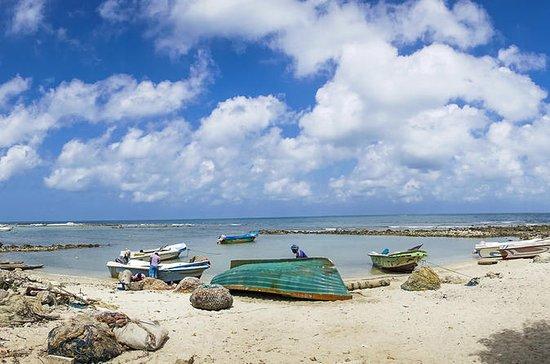 Tour de 5 noches por Sri Lanka