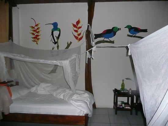 Cotococha Amazon Lodge-billede
