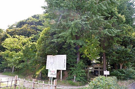 Kizoro no Fujizuka