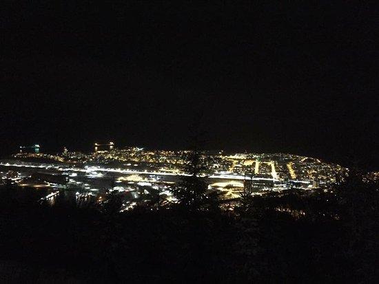 Narvik Municipality
