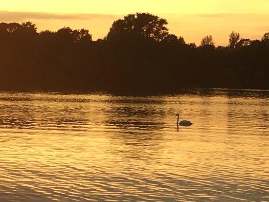 Maschsee: マッシュ湖夕暮れ