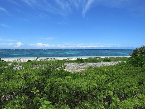 Isla del faro Amedee: Côté venteux de l'île