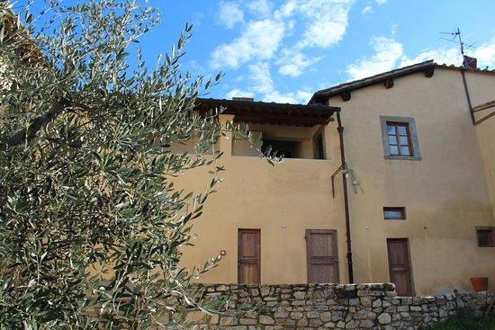 L 39 olivo italiano italian language culture school for Bagno a ripoli primolio 2018