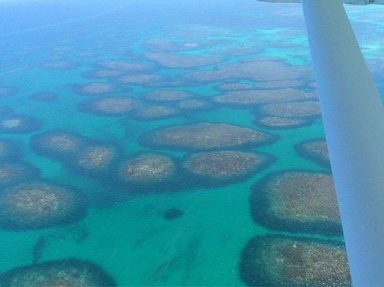 Abrolhos Islands: photo7.jpg