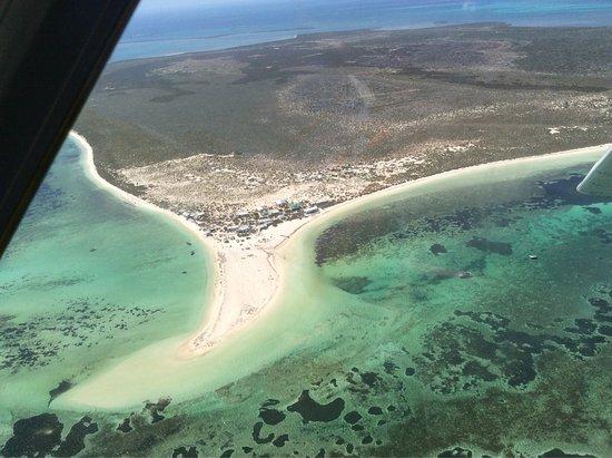 Abrolhos Islands: photo8.jpg