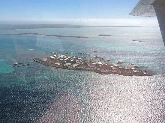 Abrolhos Islands: photo9.jpg