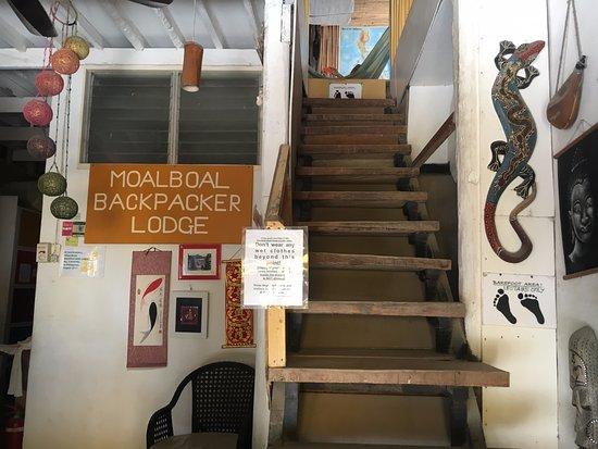 Moalboal Backpacker Lodge Image