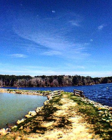 Ozark, AL : Ed Lisenby Lake