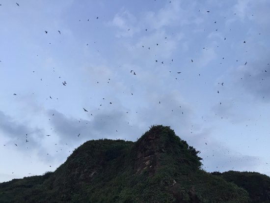 Bat Cave Park