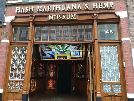 Hash Marihuana & Hemp Museum: Outdoors