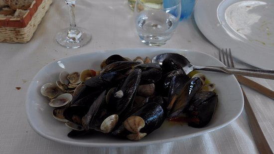 Oriente : Mussels and clams